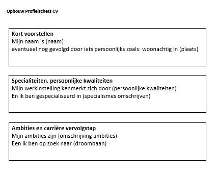 Profiel Cv